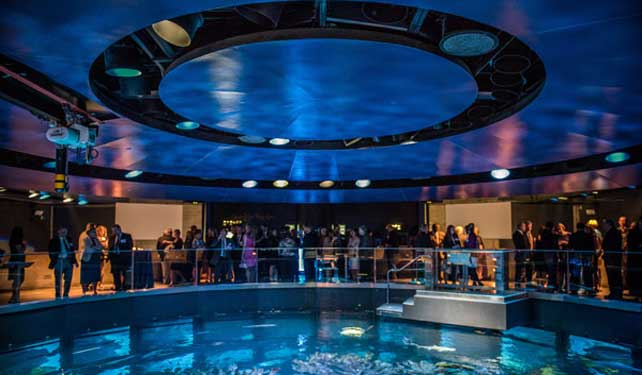 Alumni Schooled Together for Reunion 2015 at the New England Aquarium!